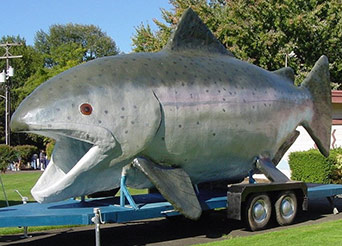 See Claudia, the 24-foot-long Chinook Salmon at the Molalla-Pudding Rivers Celebration at Canby Community Park on Saturday, May 21, 2016!